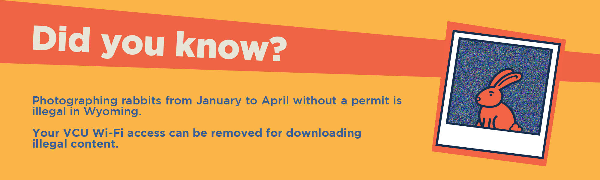Did you know? Photographing rabbits from Janurary to April without a permit is illegal in Wyoming. Your VCU Wi-fi access can be removed for downloading illegal content.